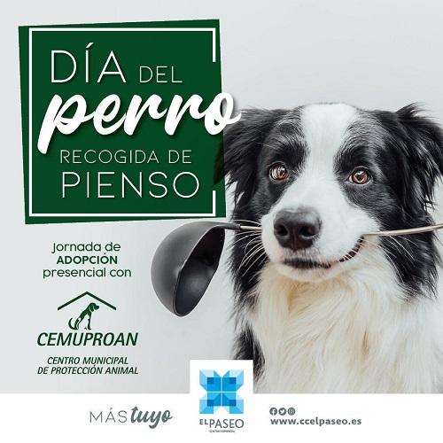 Dog day in CC EL PASEO