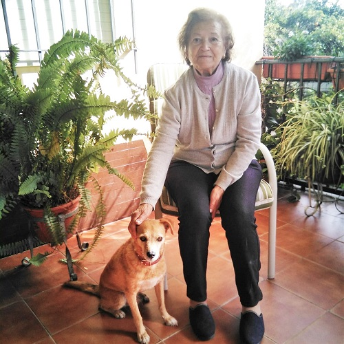 Interview with María, adopter of Perejil