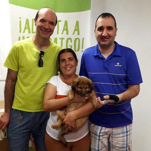 ¡Illoai adoptada!