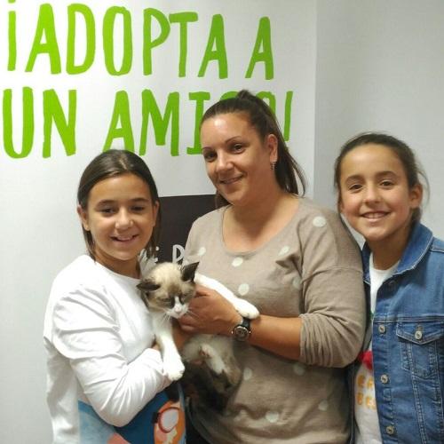 ¡Koda adoptado!
