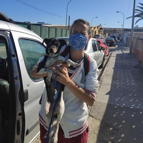 ¡Milo adoptado!