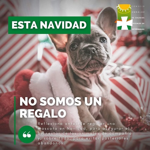 No son un regalo