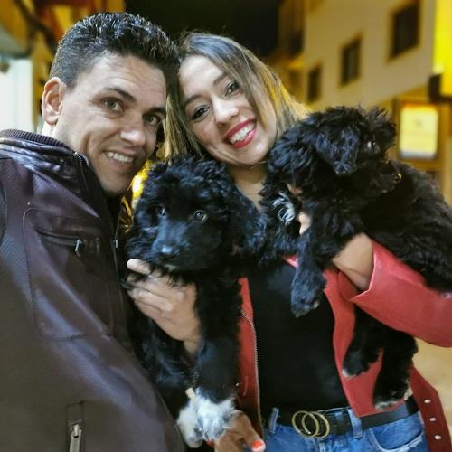 ¡Thor y Halley adoptados!