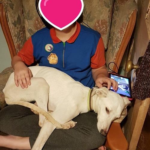 Wasabi adopted!